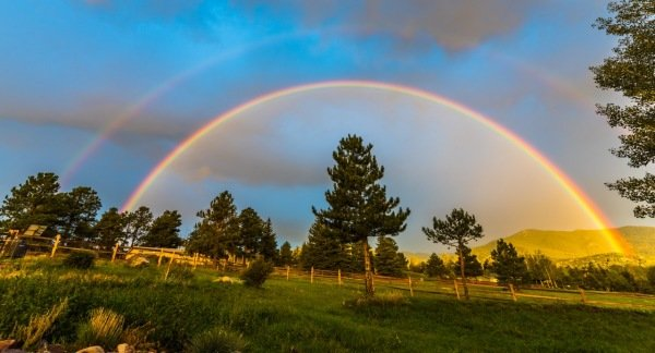 Rainbow in Evergreen Photo By Carey Martin